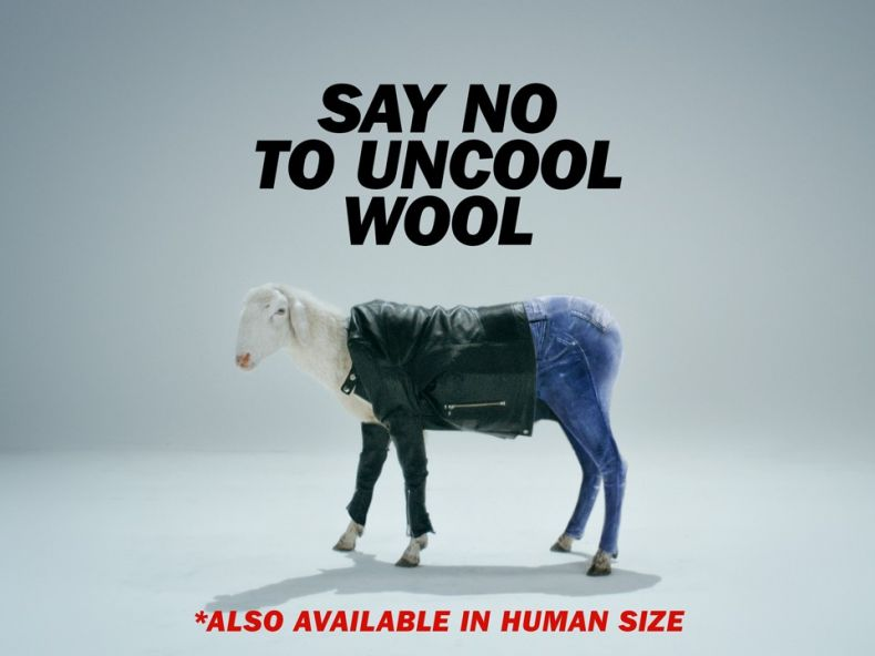 Say no to uncool wool